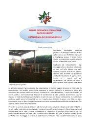 REPORT DELL'EVENTO (di F. Ramella) - Haflinger Italia