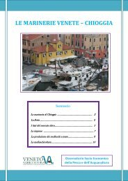 scarica il report sulla marineria di Chioggia - Veneto Agricoltura