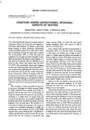 CHAETURA ANDREI (APODIFORMES, APODIDAE) : ASPECTS OF ...