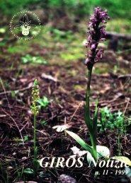 (Caserta). - GIROS - Gruppo Italiano per la Ricerca sulle Orchidee ...