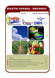 Boletín N° 83 UGR/MAG - DINAC - Ministerio de Agricultura y ...