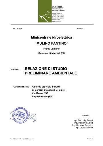 relazione di studio preliminare ambientale - Provincia di Firenze