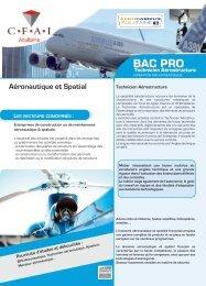 Fiche BAC PRO-TA - CFAI - Aquitaine Formation aux métiers de l ...