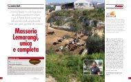 Domenico Amodio ha voluto far produrre alla poliedrica azienda che ...