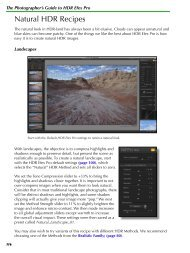 The Photographer's Guide to HDR Efex Pro