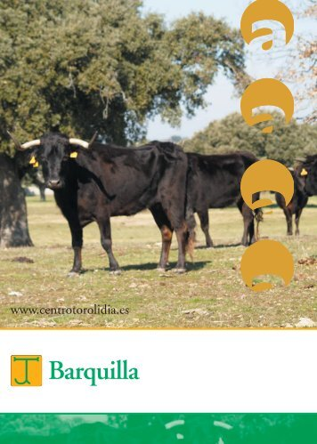 5592 Barquilla Entrev