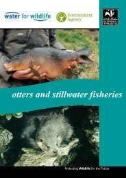 Otters and stillwater fisheries guidance: (1.96mb) - Natural England