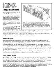 Trapping Wildlife - Washington Department of Fish & Wildlife