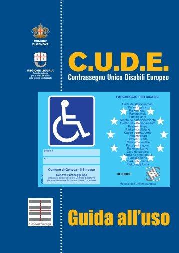 Contrassegno disabili - Guida all'uso - Blu Area