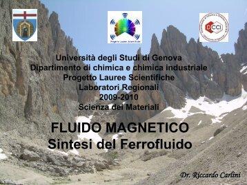 FLUIDO MAGNETICO Sintesi del Ferrofluido - Dipartimento di Fisica ...