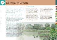 Gli stagni e i laghetti - Provincia di Milano