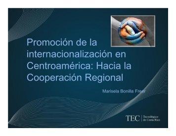 Promoción de la internacionalización en ... - Caie-caei.org