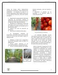 Número 38. Enero-febrero 2013 - Ministerio de Agricultura y ... - Page 3