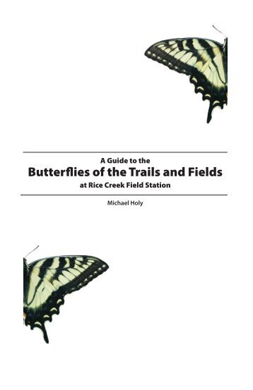 A Guide to the Butterflies of the Trails and Fields at Rice Creek Field ...