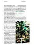 Clique aqui para ver o texto completo - Ceinfo - Page 2