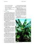 Clique aqui para ver o texto completo - Ceinfo - Page 4