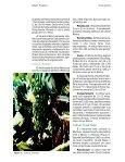 Clique aqui para ver o texto completo - Ceinfo - Page 5