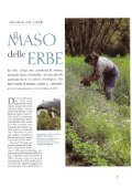 Gardenia (giugno): Il maso delle erbe - Pflegerhof - Page 2