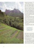Gardenia (giugno): Il maso delle erbe - Pflegerhof - Page 3