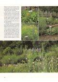 Gardenia (giugno): Il maso delle erbe - Pflegerhof - Page 5