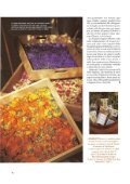 Gardenia (giugno): Il maso delle erbe - Pflegerhof - Page 7