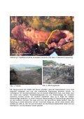 Download - Dr. Kölsch Geo - Seite 3