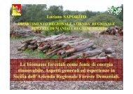 Le biomasse forestali come fonte di energia rinnovabile