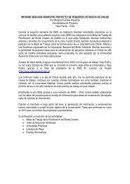 Mesa de Trabajo sobre la Planificacin del Borde ... - Yaqu Pacha