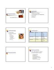 Carbohidratos Funciones Carbohidratos clasificación ...