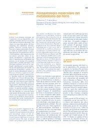 dispense metabolismo ferro 1 - Docente.unicas.it