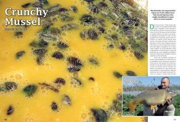 Crunchy Mussel / Mattia Travasoni / 3.2Mb - K-Karp