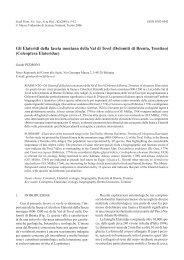 scarica pdf 880 KB - Museo Tridentino di Scienze Naturali