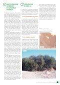 L'ARGANERAIE ALGERIENNE - PNUD - Page 7