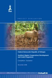 Ethiopia SOCODEP CE - main report - IFAD