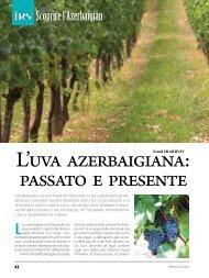 L'uva azerbaigiana: passato e presente - Irs