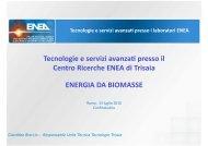 Tecnologie e servizi avanzati dall'Agenzia ENEA - Biomasse