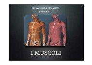 7-Fisica-Biomeccanica Muscolare-New