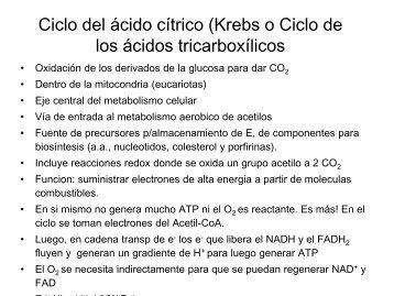 Clase 16 Krebs 2010