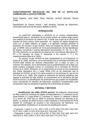 CARACTERIZACIÓN MOLECULAR DEL GEN DE LA ACETIL-COA ...