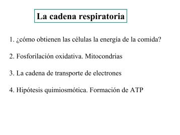 biophys14
