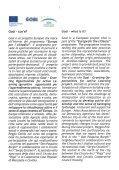 Allegato che descrive il progetto e gli esiti - La Citta' dei Cittadini - Page 3