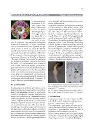 Questa bella d'erbe famiglia - Piante, ambiente, uomo (pdf 668 KB)