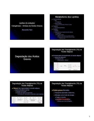 Lipólise, Cetogênese e síntese de ácidos graxos