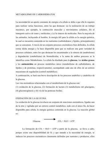 METABOLISMO DE CARBOHIDRATOS - FMVZ-UNAM