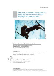 Population Survey and Conservation of the Bengal Slow Loris in ...