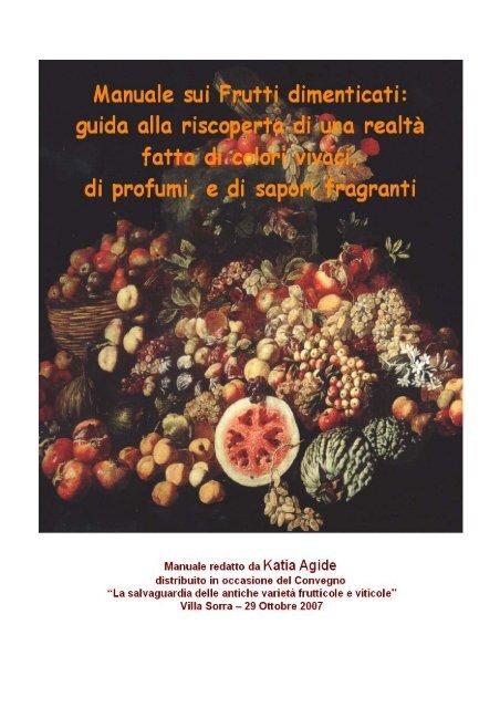 ** piante da giardino semi inverno duro ornamentali pianta sementi FRUTTA BIANCA BOCCA Mirtillo