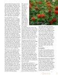 1 - Foray Newfoundland and Labrador - Page 7