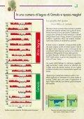 IL Legno del Cirmolo - Duegi - Page 3