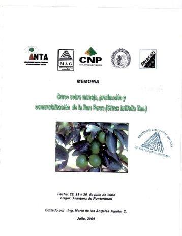 Limón Persa, manejo, producción y comercialización - Ministerio de ...