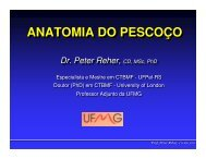 (Microsoft PowerPoint - 06 - Pesco\347o.ppt) - ICB - UFMG